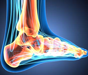 Ankle Joint Replacement near Newton